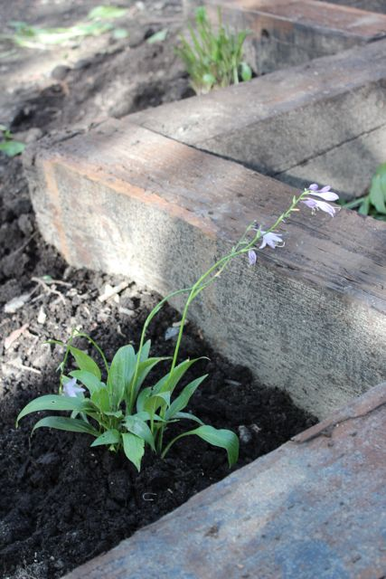 How-to: Make a garden with reclaimed railroad ties