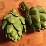 Vegan Vittles: How to cook an artichoke!