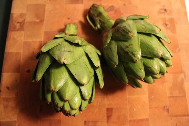 Vegan Vittles: How to cook an artichoke!