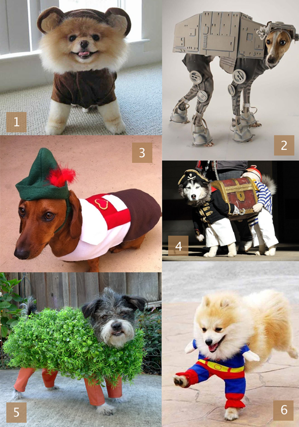 Dog Costume Inspiration | HandsOccupied.com