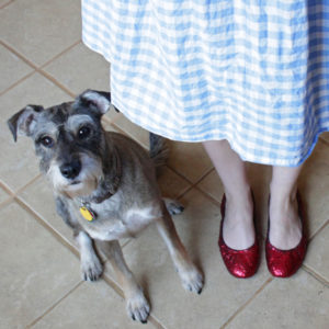 How-to: DIY Ruby Slippers
