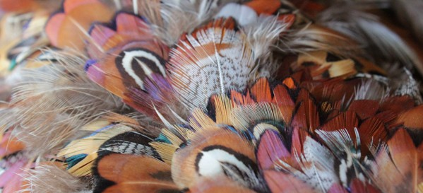 How-to: Pheasant Feather Wreath
