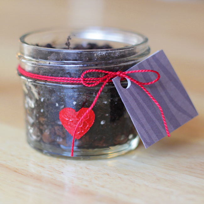 How-to: Seed Starter Valentine | HandsOccupied.com