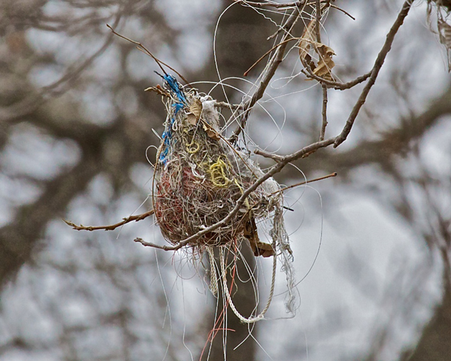 How to make bird nest helpers to use up scrap yarn! - image via phranksphotos365