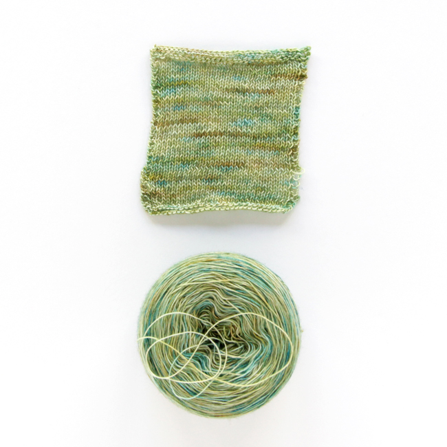Dream in Color Jilly Yarn in Cabbage Patch (Exclusive colorway for A Good Yarn Sarasota)