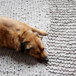 Click through for a free pattern for a Bulky Knit Rug (or throw!)