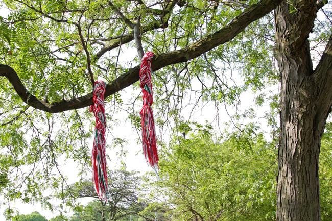 Knit in Public Day Recap!