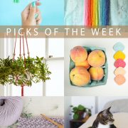 Picks of the Week for August 11, 2017 | Hands Occupied